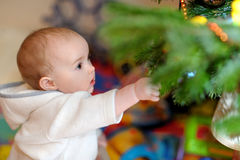 Little girl trimming a Christmas tree. Pretty little girl trimming a Christmas tree Stock Photos