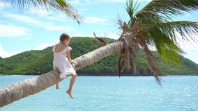 Little girl at tropical beach sitting on palm tree and havinf a lot of fun. Kid on caribbean vacation in Antigua island. Adorable little girl at tropical beach stock video footage