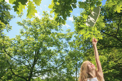 Little girl try to catch heart on a tree Stock Photography