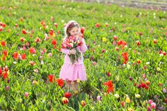 Little girl in tulip flower garden Royalty Free Stock Images