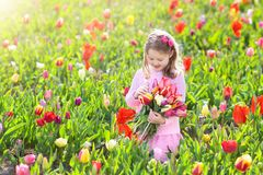 Little girl in tulip flower garden Royalty Free Stock Photo