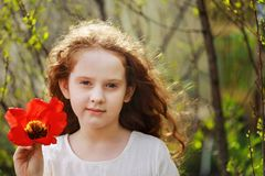 Little girl with tulip flower, summer background stock photo