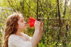 Little girl with tulip flower, summer background royalty free stock images