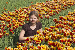 Little girl in tulips field Royalty Free Stock Photography