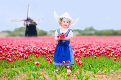 Little girl in tulips field with windmill in Dutch costume. Adorable curly toddler girl wearing Dutch traditional national costume dress and hat playing in a Stock Photo