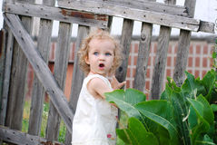 Little girl turned around at the gate and stares open-mouthed Royalty Free Stock Photos