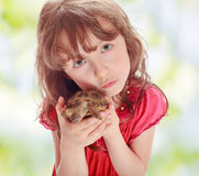 Little girl with a turtle Royalty Free Stock Photo