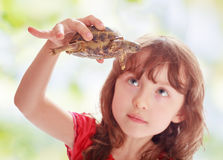 Little girl with a turtle. Portrait of a girl with a turtle in the hands Royalty Free Stock Photography