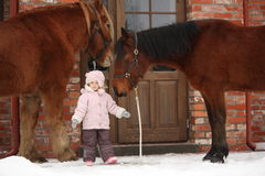 Little girl and two horses standing near the cottage door Stock Photos