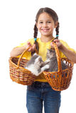 Little girl with two kittens in wicker Stock Photo