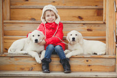 A little girl with two puppy Golden Retriever. Royalty Free Stock Photos