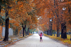 Little girl with umbrella on street autumn season Royalty Free Stock Images