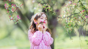 Little girl under blooming apple tree stock image