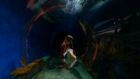 Little girl in an underwater tunnel. A little girl playing in an underwater tunnel as fish swim all around. Long shot stock video footage