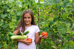 Little girl in vegetable garden. Selective focus, copy space Stock Images