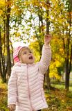 Little girl walk in autumn forest royalty free stock photography