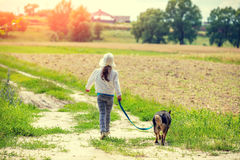 Little girl walk with dog. Happy little girl walk with dog on the field back to camera Royalty Free Stock Photography