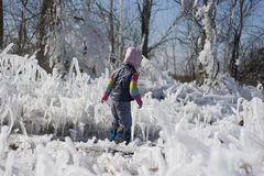 Little girl on a walk among the ice Royalty Free Stock Photo