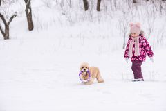 Little girl walk in snow with cocker spaniel. Female toddler in pink during winter walk outdoors stock photography