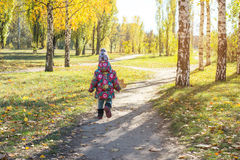 Little girl is walking in the autumn park. Back view. Stock Images