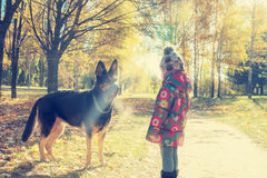 Little girl walking with a big dog Royalty Free Stock Photo