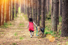 Little girl walking with big dog Stock Images