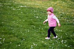 Little girl walking on blooming meadow Royalty Free Stock Image