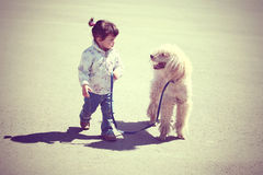 Little girl walking with dog Royalty Free Stock Images