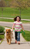 Little Girl Walking Dog Stock Photo