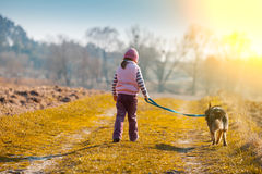 Little girl is walking with a dog. On the field back to the camera Stock Image