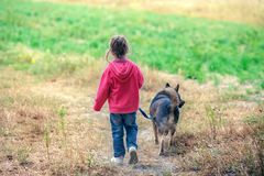 Little girl walking with dog in the field stock photography