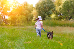 Little girl walking with dog Stock Photo