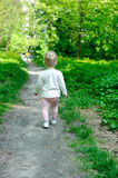 Little girl walking in forest Stock Images