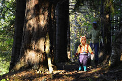 Little girl walking in the forest Stock Photography