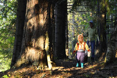 Little girl walking in the forest Royalty Free Stock Photos