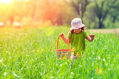 Little girl walking on the green field royalty free stock photography