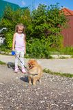 Little girl walking with her ??dog on a leash Stock Images