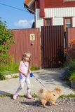 Little girl walking with her ??dog on a leash Royalty Free Stock Images