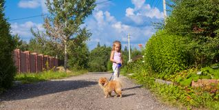 Little girl walking with her ??dog on a leash Royalty Free Stock Photos