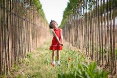 Little girl walking in nature field wearing beautiful dress Stock Photos