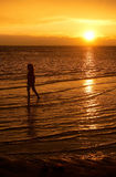 A little girl walking at the seaside during sunset Stock Photography