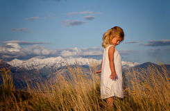 Little girl walking through tall grass Royalty Free Stock Image