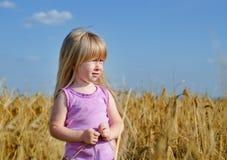 Little girl walking in a wheat field Stock Photography