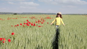 Little girl walking through a wheat field stock video