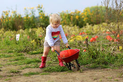 Little girl walking with wheelbarrow on the field Royalty Free Stock Photo