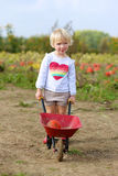 Little girl walking with wheelbarrow on the field Stock Photography