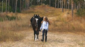 The little girl walks in autumn forest together with horse stock video footage