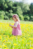 Little girl walks in the field Stock Images
