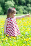 Little girl walks in the field Royalty Free Stock Photo