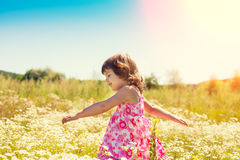 Little girl walks on the field Royalty Free Stock Photos